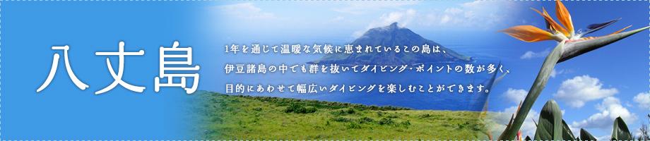 八丈島~周囲54キロ伊豆七島の中で最も大きな島です。黒潮の影響をタップリ受ける伊豆八丈島の海は、様々な生き物達で満ち溢れています。