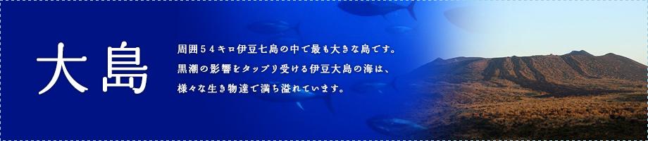 大島~周囲54キロ伊豆七島の中で最も大きな島です。黒潮の影響をタップリ受ける伊豆大島の海は、様々な生き物達で満ち溢れています。