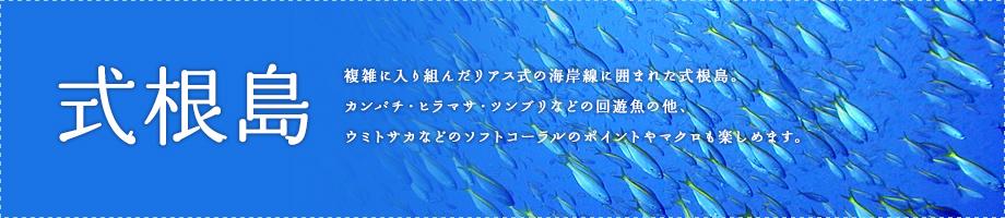 式根島~周囲54キロ伊豆七島の中で最も大きな島です。黒潮の影響をタップリ受ける伊豆式根島の海は、様々な生き物達で満ち溢れています。
